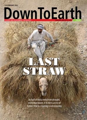 Down To Earth February 1, 2016 Magazine