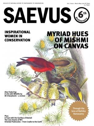 Saevus March - May 2018 Magazine