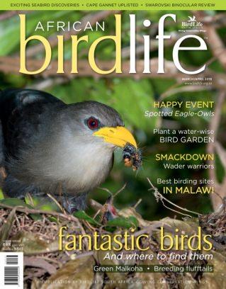 African Birdlife March/April 2018 Magazine