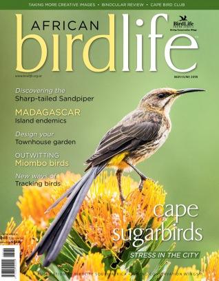 African Birdlife May/June 2018 Magazine