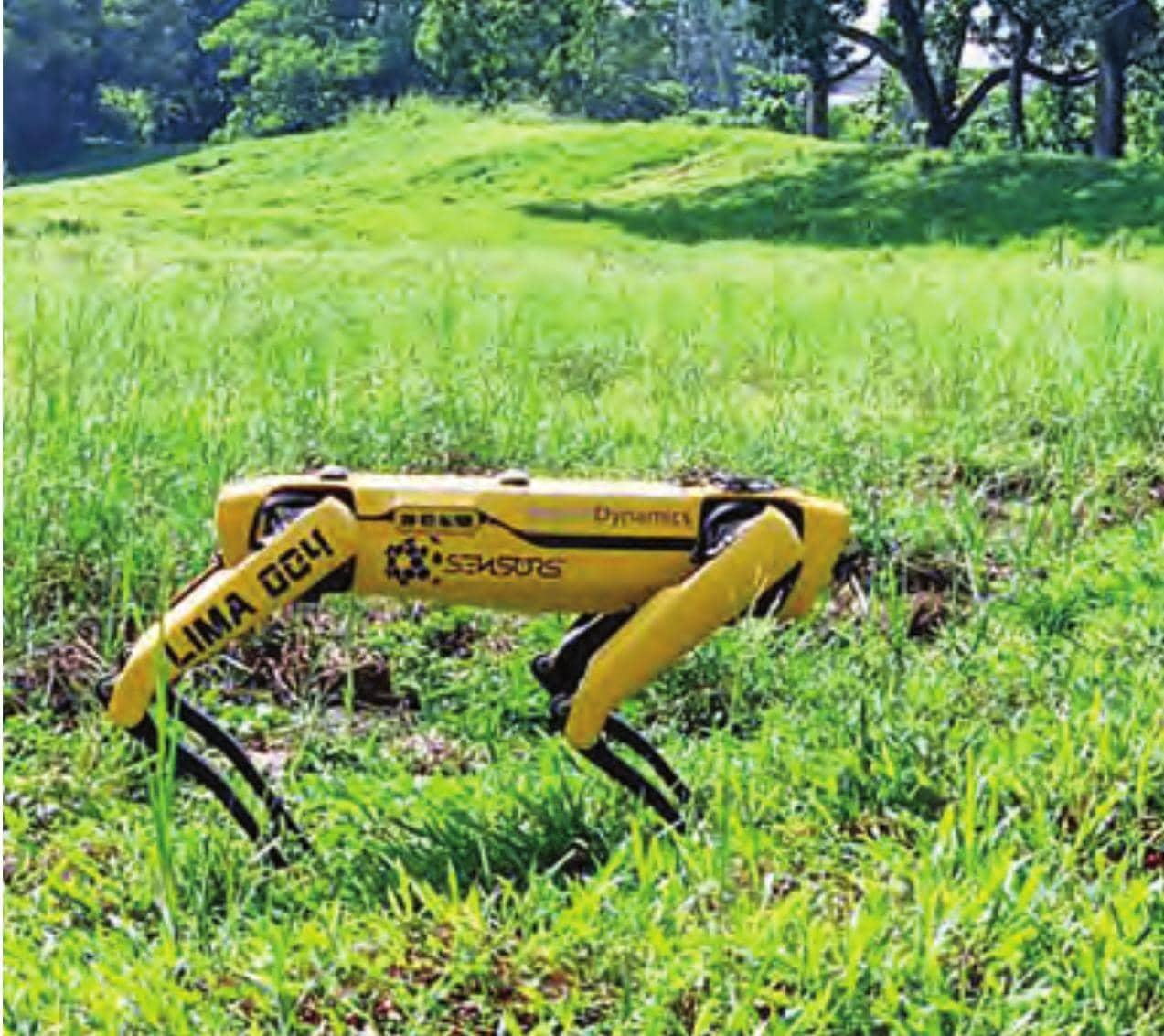 સિંગાપોરમાં રોબોટ કરી રહ્યો છે પેટ્રોલિંગ