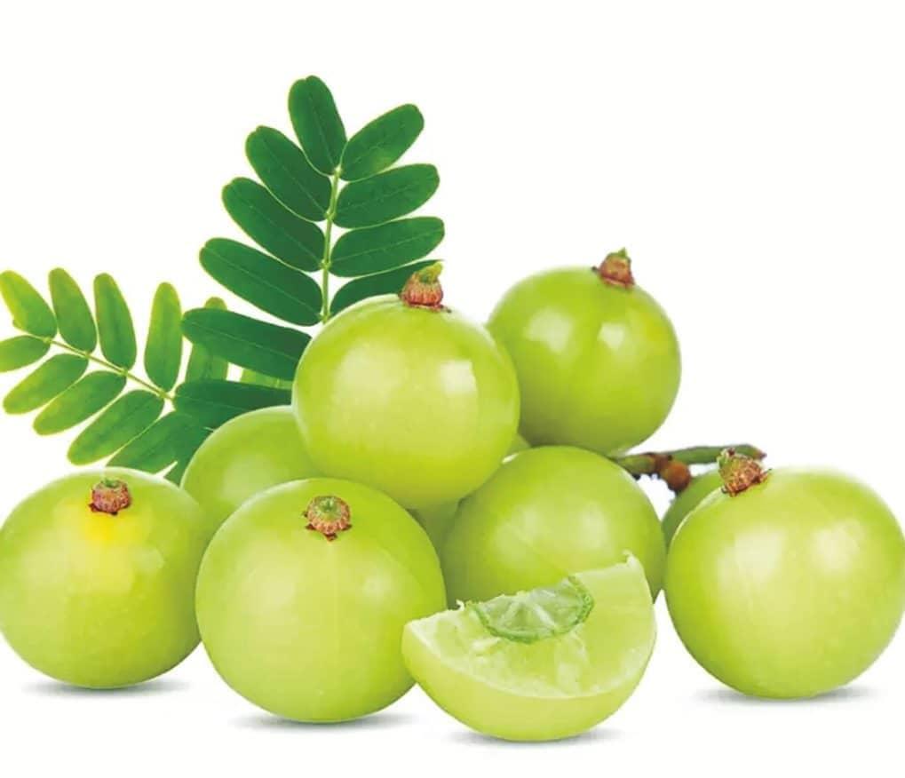 AMLA (Indian Gooseberry