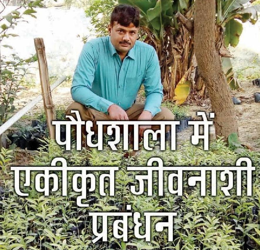 पौधशाला में एकीकृत जीवनाशी प्रबंधन