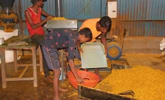 વુમન્સ: પ્રેરણારૂપ બનતા શાક્ષિક મહિલા ખેડૂત