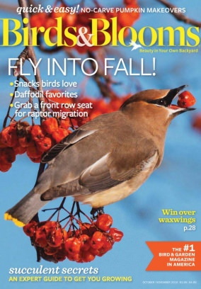 Birds & Bloom Magazine October - November 2016 issue – Get ...