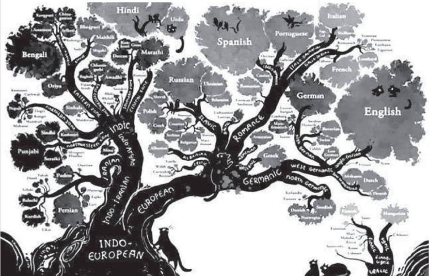 भाषा परिवार और सभ्यता का नस्ली सिद्धांत