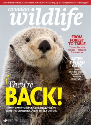 Canadian Wildlife Federation adds its exciting magazines to Magzter Image