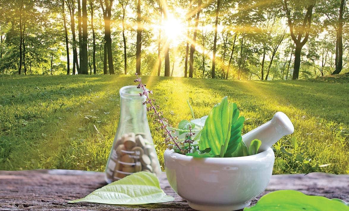 आयुर्वेद से करें पर्यावरण की रक्षा